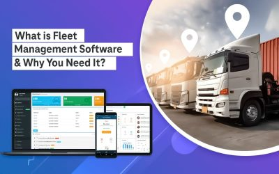 What is Fleet Management Software & Why You Need It