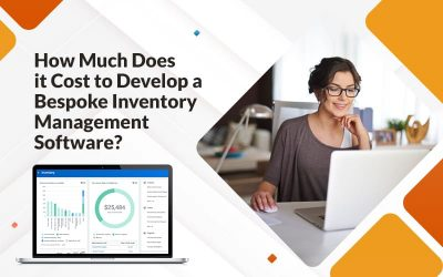 How Much Does it Cost to Develop a Bespoke Inventory Management Software