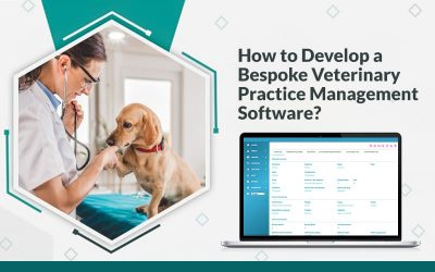 How to Develop a Bespoke Veterinary Practice Management Software