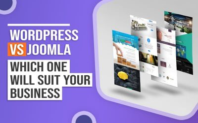 Wordpress vs joomla which one will suit your business